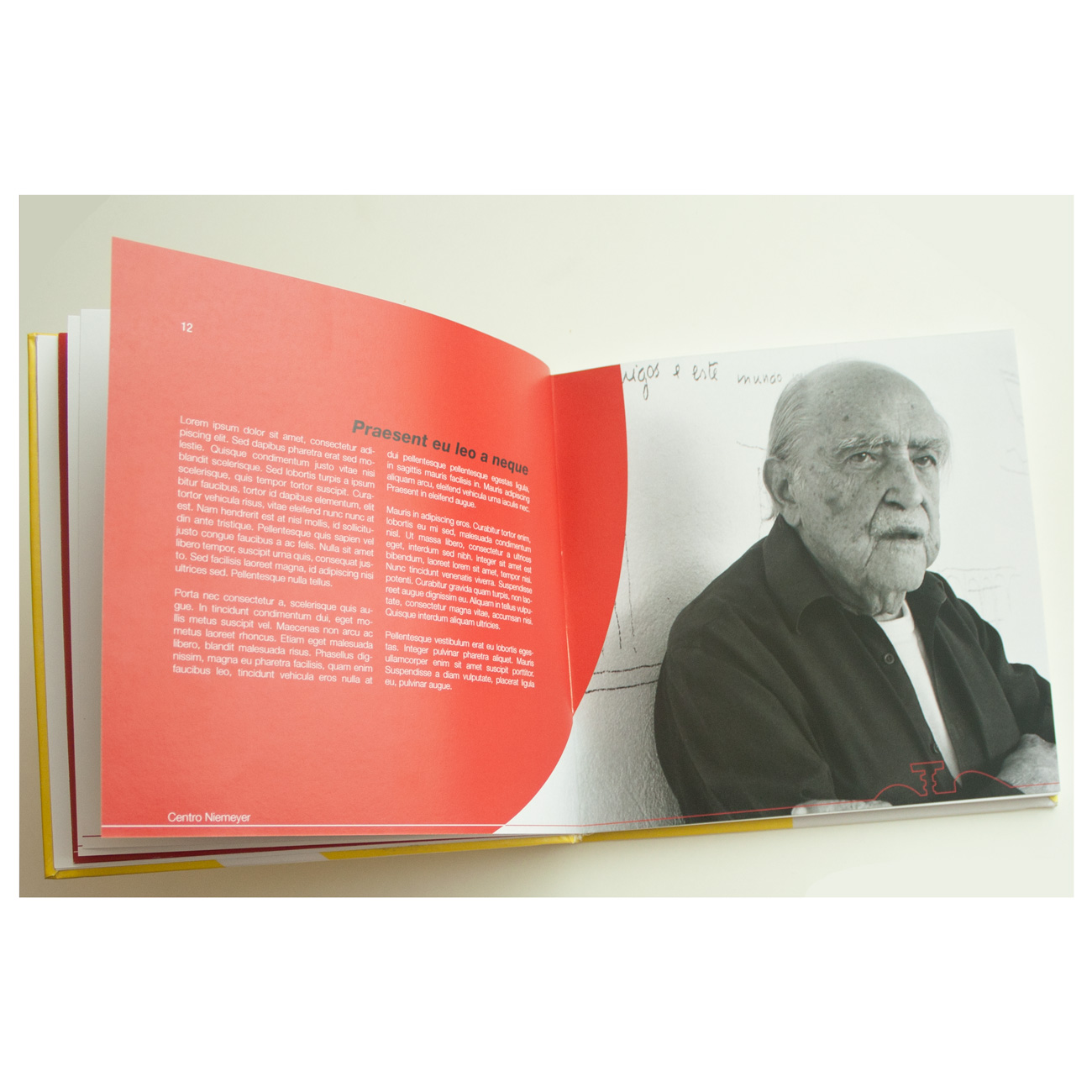 diseño editorial de catalogo de oscar niemeyer