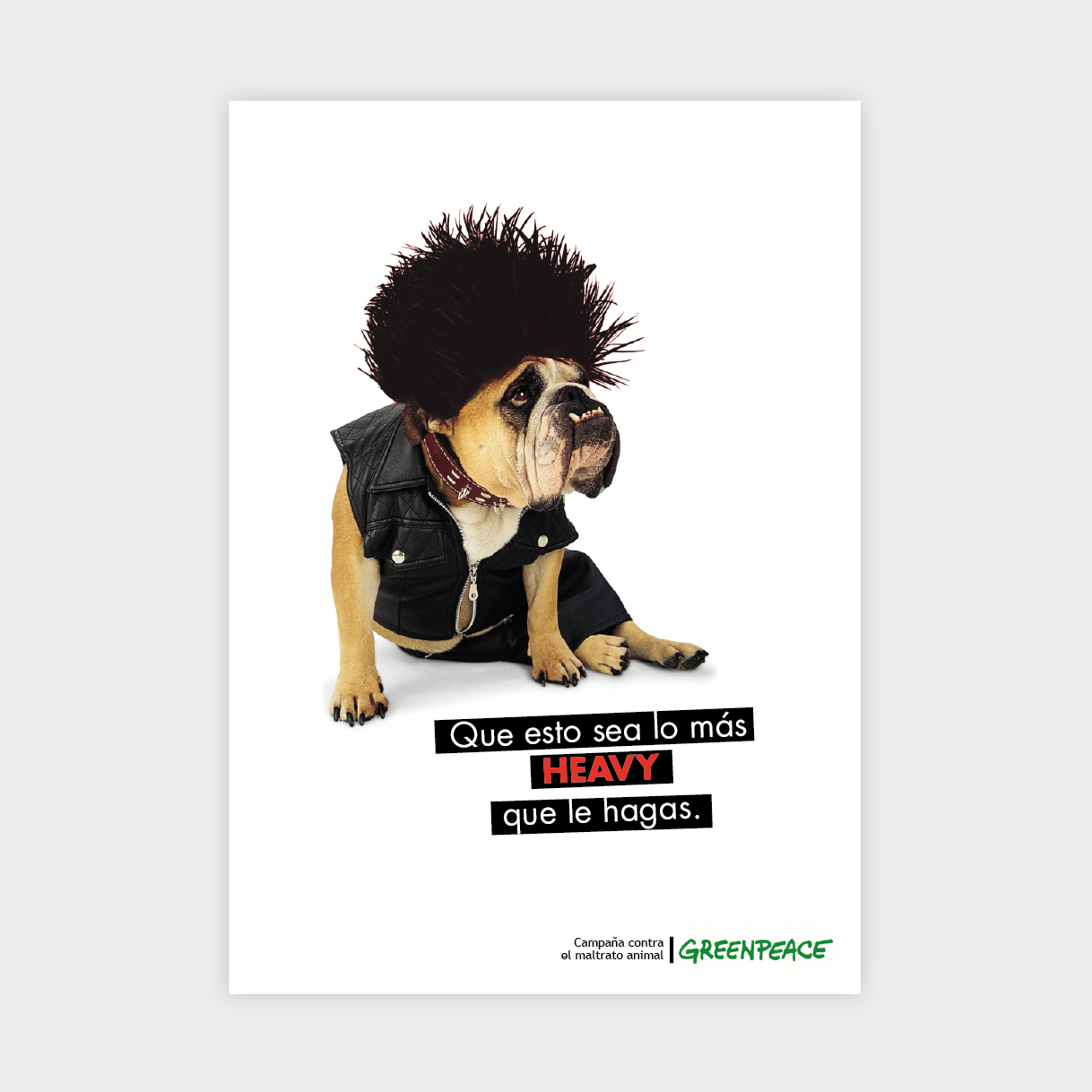 campaña maltrato animal